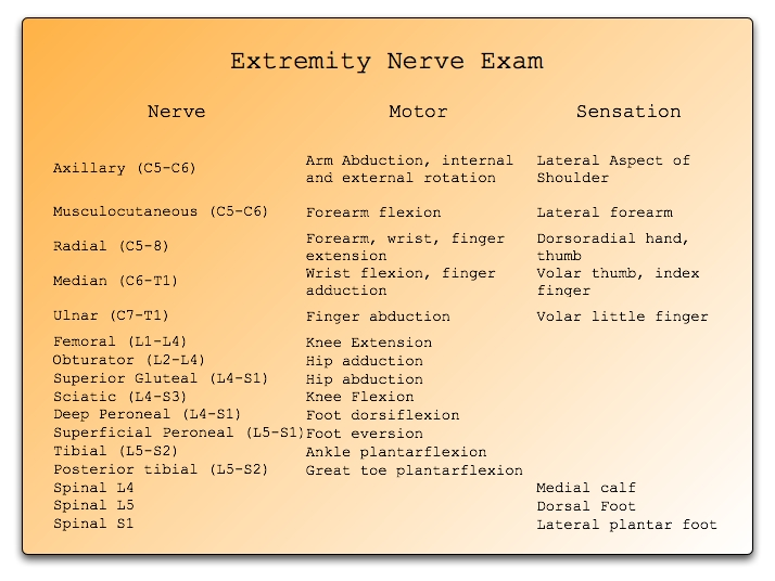 extremity_nerve_exam