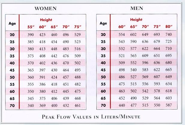 peak flow meter range for adults