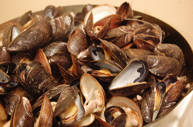 the relationship of radiocontrast iodine and seafood allergies