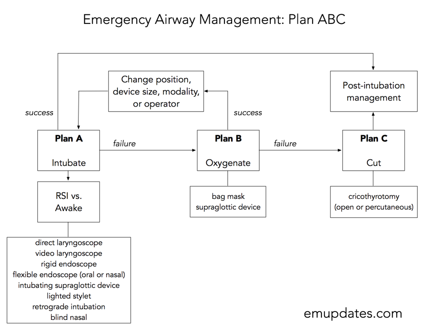 emergency medicine updates - Page 8